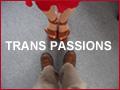image representing the Transgender community